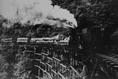 眠月線正通過木橋的運材列車