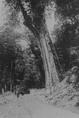 尚未興建鐵道的神木